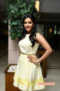 Priya Anand At Vai Raja Vai Pressmeet New Still 192