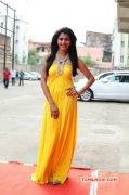 Actress Dhansika Vizhithiru Audio Event Image 449